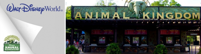 Disneys Animal Kingdom