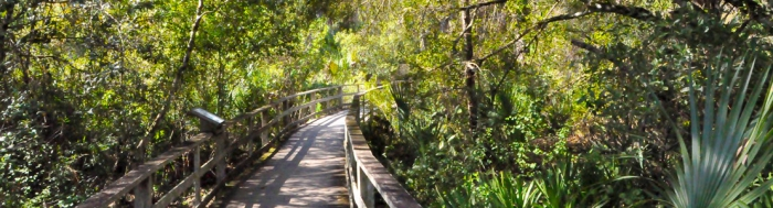 Corkscrew Swamp Sanctuary Nationalpark