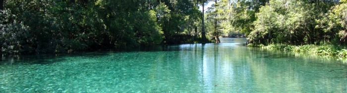 Homosassa Springs & Crystal River
